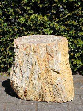 Beistelltisch fossil Holz PU-6