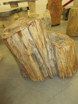 Fossiles Holz C30