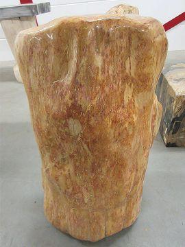 versteinertes Holz C35