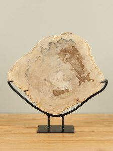 Fossiles Holz auf Standfuß PJ-8
