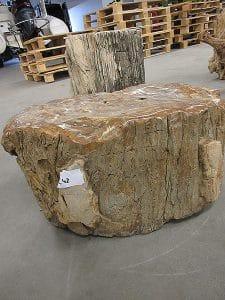 versteinertes Holz C42