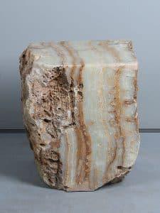 Fossiles Holz PJ-27