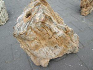 Fossiles Holz BA10