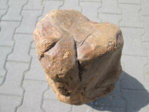Fossiles Holz BA15