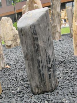 Versteend-hout-Eur-12950-45x20-22kg-1GJ_product