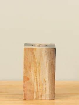 Waxinelicht versteend hout nr. W2